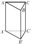 在如图所示的直三棱柱中,互相平行的棱有( ) A. 3对 B. 4对 C. 5对 D. 6对